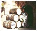Изготовление вина давно стало традицией на Кипре