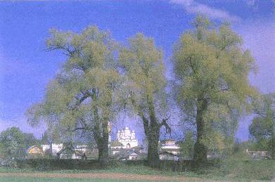 Боровско-Пафнутьевский монастырь