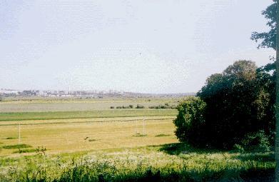 Дворцовое село Остров